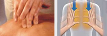 Sincronización de los movimientos de amasamiento con el flapping